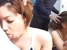 School sluts getting tired from being mouth fucked