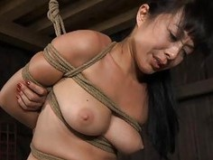 Restrained gal is hoisted up for her hawt torment