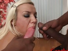 Babe anal toys and pussy fucked by big black cocks