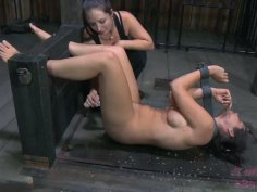 Busty brunette whore Beverly Hills is locked in the leg pillory